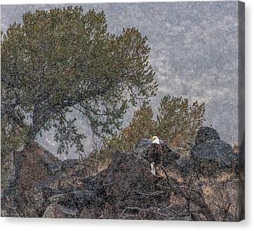 Canvas Print featuring the photograph Snow Flurry Bald Eagle by Britt Runyon