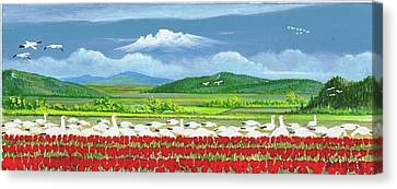 Snow Geese And Tulips Canvas Print by Bob Patterson