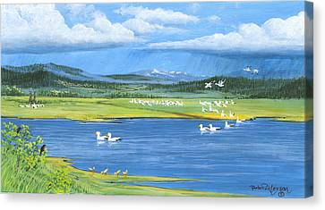 Snow Geese  Tidal Flats Canvas Print by Bob Patterson