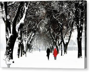 Snow In Bavaria, Winter Landscape Canvas Print