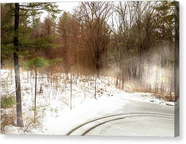 Winter Storm Canvas Print - Snow In Spring by Terry Davis