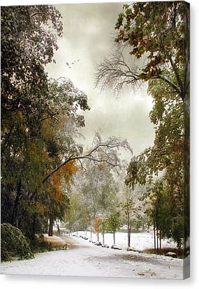 Snow Kissed Canvas Print by Jessica Jenney