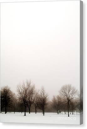 Snow Landscape Canvas Print by Emilio Lovisa