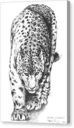 Snow Leopard Canvas Print by Bob Patterson