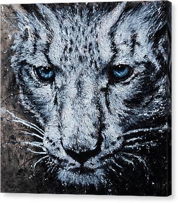 Snow Leopard Canvas Print by Brian Owens