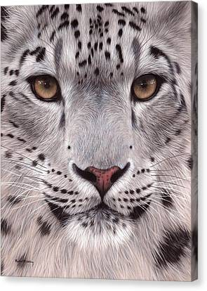 Snow Leopards Canvas Print - Snow Leopard Face by Rachel Stribbling