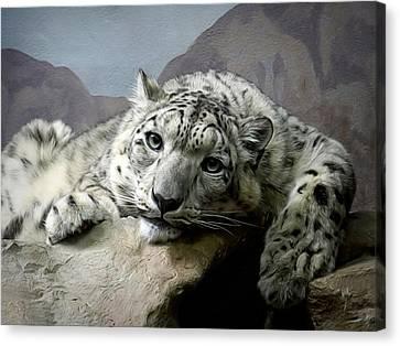 Snow Leopard Relaxing Digital Art Canvas Print by Ernie Echols