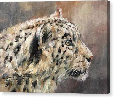 Canvas Print featuring the painting Snow Leopard Study by David Stribbling