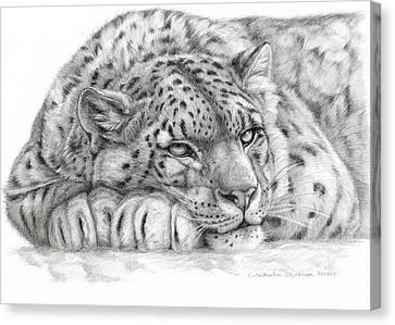 Snow Leopard Canvas Print by Svetlana Ledneva-Schukina