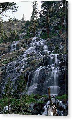 Snow Melt Runoff - Goddard Canyon Canvas Print by Soli Deo Gloria Wilderness And Wildlife Photography