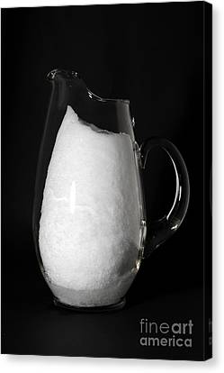 Snow Melting 2 Of 8 Canvas Print by Ted Kinsman
