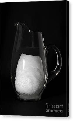 Snow Melting 3 Of 8 Canvas Print by Ted Kinsman