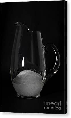 Snow Melting 6 Of 8 Canvas Print by Ted Kinsman