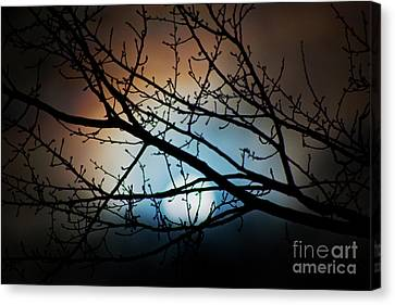 Snow Moon 2 Canvas Print by Janie Johnson