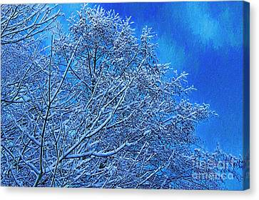 Canvas Print featuring the photograph Snow On Branches Photo Art by Sharon Talson