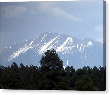 Snow On The Mountain Canvas Print by Jeanette Oberholtzer