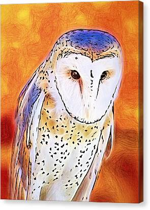 Canvas Print featuring the digital art White Face Barn Owl by Tracie Kaska
