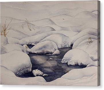 Snow Pool Canvas Print by Debbie Homewood