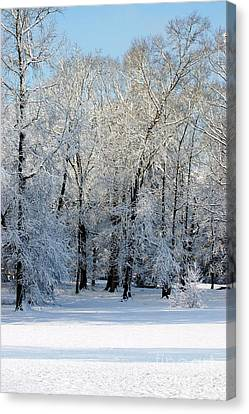 Snow Scene One Canvas Print by Donna Bentley