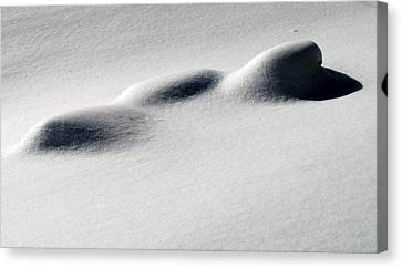 Canvas Print featuring the photograph Snow Shadows 2 by Douglas Pike