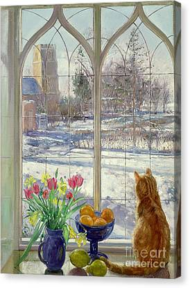 Snow Shadows And Cat Canvas Print by Timothy Easton