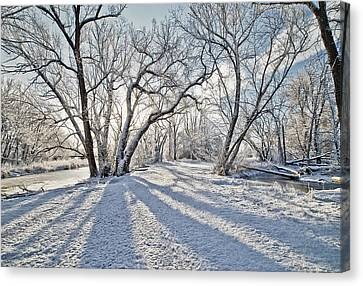 Snow Shadows Canvas Print by James Steele