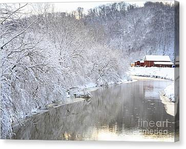 Snow Storm Canvas Print by Joan Powell