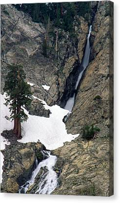 Snow Tunnel Canvas Print by Soli Deo Gloria Wilderness And Wildlife Photography