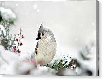 Canvas Print featuring the photograph Snow White Tufted Titmouse by Christina Rollo
