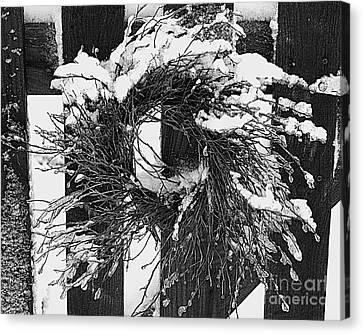 Snow Wreath Canvas Print by Diane E Berry