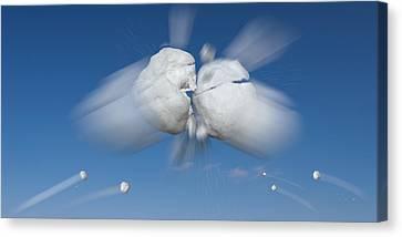 Snowball Canvas Print - Snowball Flight by Steve Gadomski