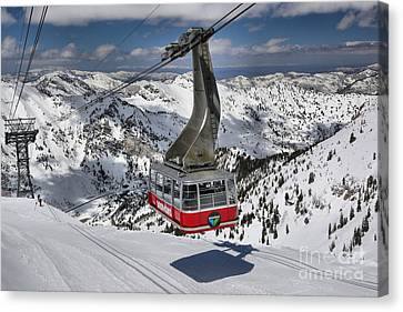 Snowbird Cable Car Canvas Print by Adam Jewell