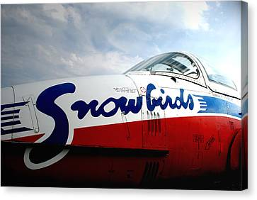 Snowbirds 2 Canvas Print by Mark Alan Perry