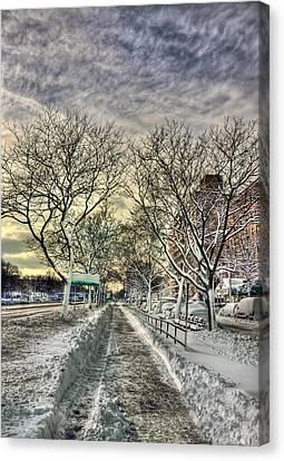 Snowbound Canvas Print by Evelina Kremsdorf
