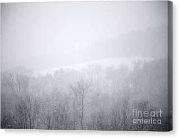 Snowbound Canvas Print by John Stephens