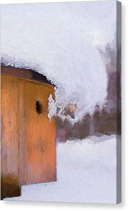 Canvas Print featuring the photograph Snowdrift On The Bluebird House by Gary Slawsky