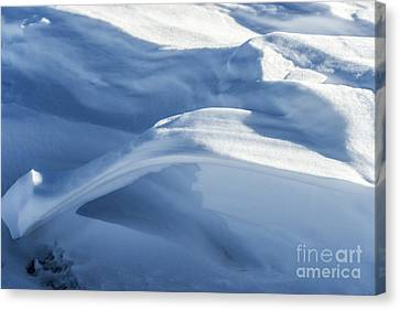 Canvas Print featuring the photograph Snowdrift Structure by Angela DeFrias