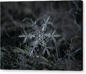 Snowflake 2 Of 19 March 2013 Canvas Print