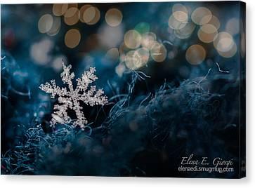 Snowflake Canvas Print by Elena E Giorgi