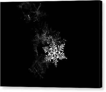 Snowflake Canvas Print by Mark Watson (kalimistuk)