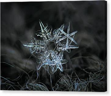 Snowflakes Canvas Print - Snowflake Of 19 March 2013 by Alexey Kljatov