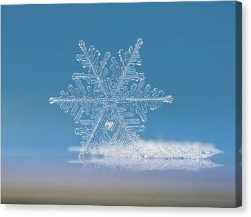 Snowflake Photo - Cloud Number Nine Canvas Print