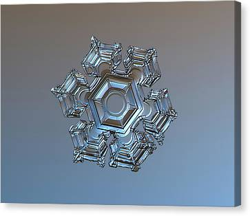 Snowflake Photo - Cold Metal Canvas Print