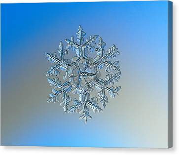 Canvas Print featuring the photograph Snowflake Photo - Gardener's Dream by Alexey Kljatov