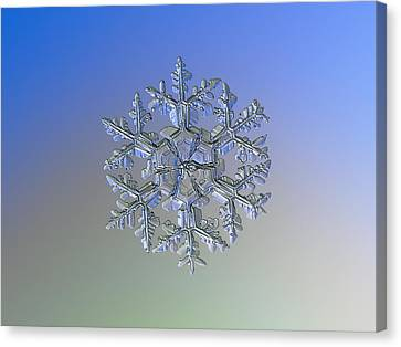 Snowflake Photo - Gardener's Dream Alternate Canvas Print by Alexey Kljatov