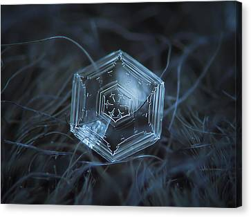 Canvas Print featuring the photograph Snowflake Photo - Hex Appeal by Alexey Kljatov