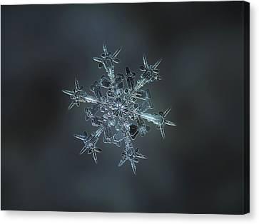 Snowflake Photo - Starlight II Canvas Print by Alexey Kljatov