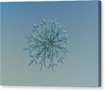 Snowflake Photo - Twelve Months Canvas Print