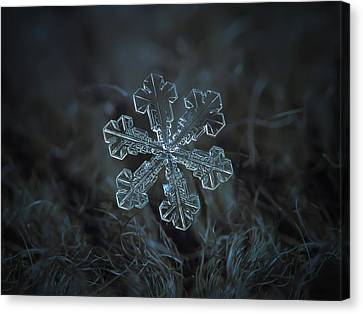 Snowflake Photo - Vega Canvas Print