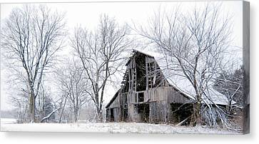 Snowmageddon  Canvas Print by Dusty Weter
